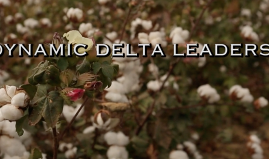 Dynamic Delta Leaders: Education is the Key