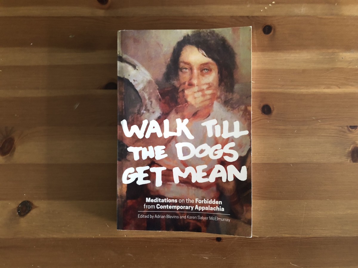 Walk Till the Dogs Get Mean book cover.