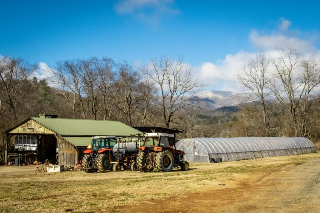 SMM Farm was founded by Salvador Moreno Sr. in 2004 in Western North Carolina. Over the years, it has grown into a commercial operation, providing fruits and vegetables to a single broker. Photo: Adam Dahlstrom/100 Days in Appalachia